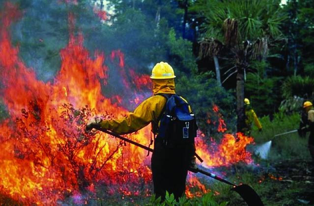 إطفاء حرائق الغابات شمال غرب المحيط الهادي