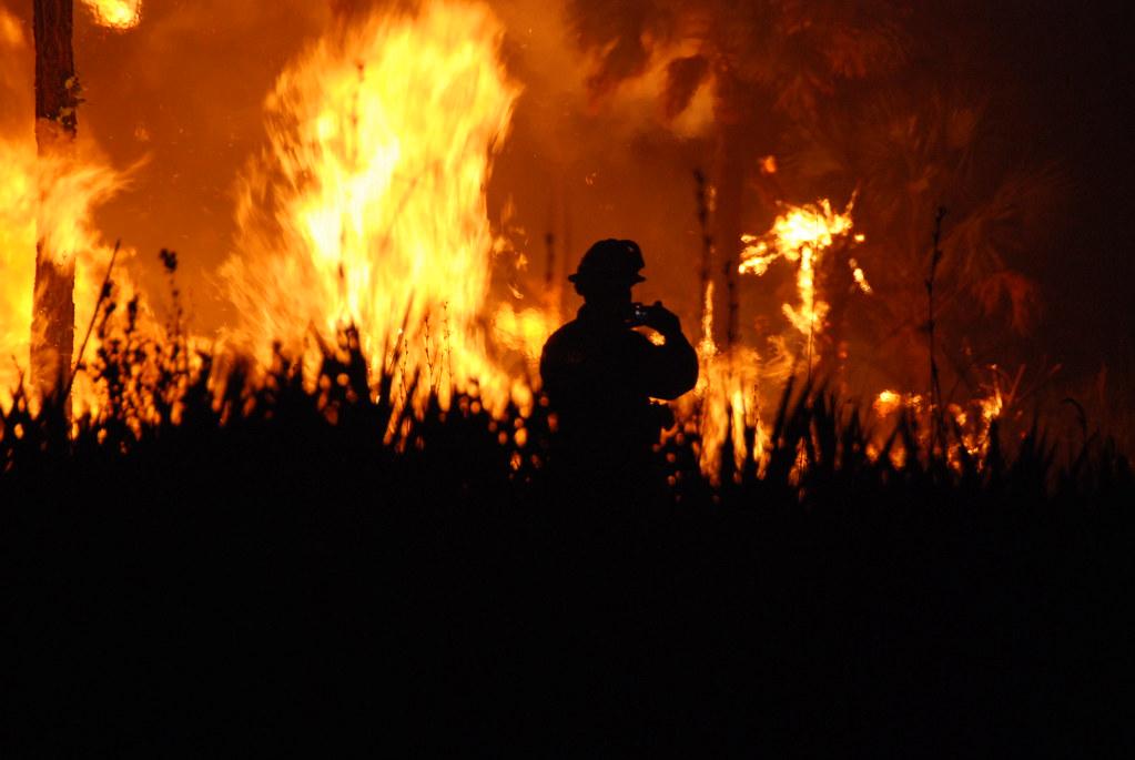 حرائق الغابات في فلوريدا