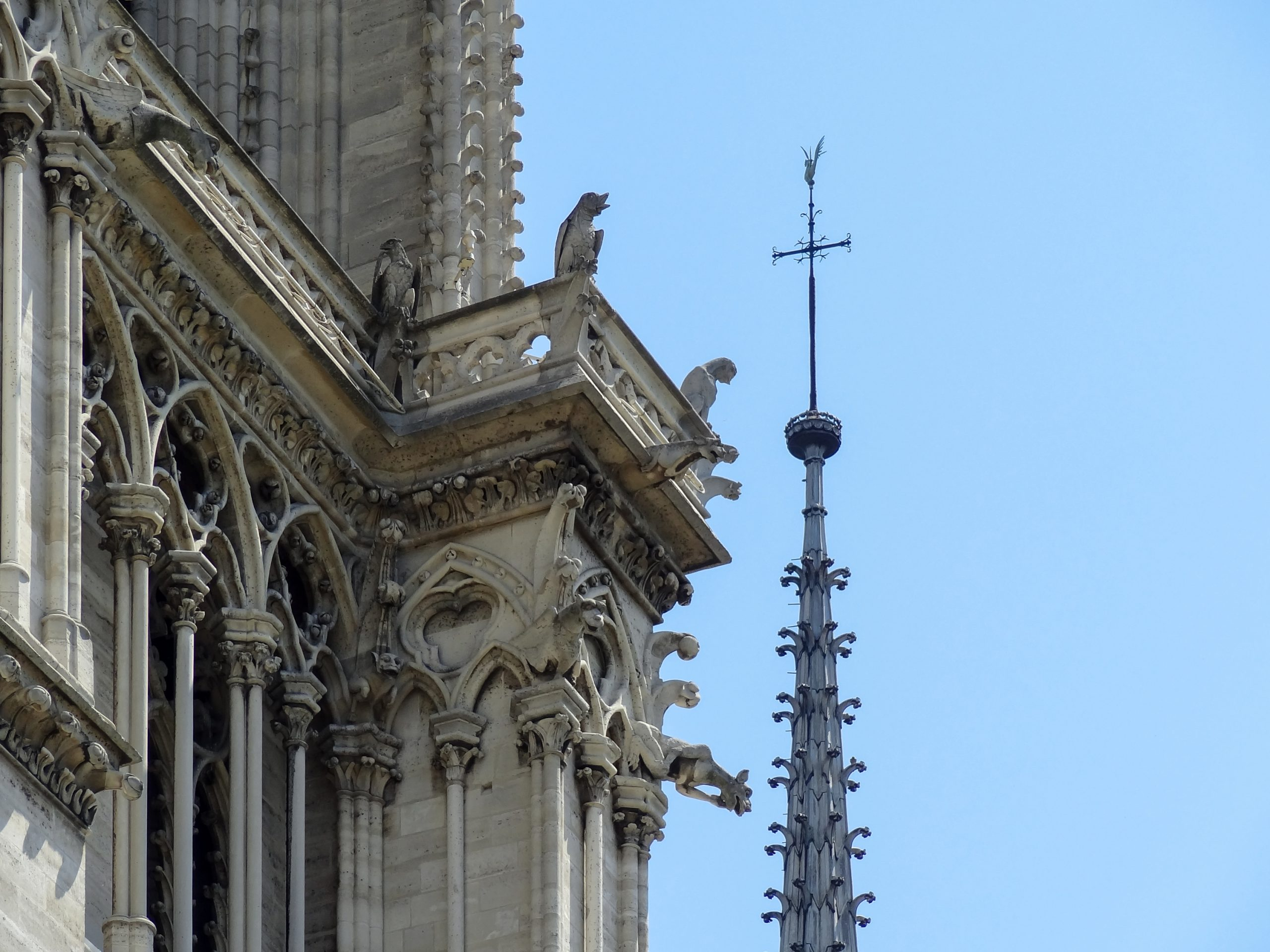 مانع صواعق كنيسة نوتردام