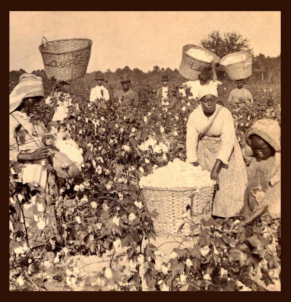 من تاريخ العبودية..هل أجبرت الأمهات العبيد على إرضاع الأطفال البيض؟
